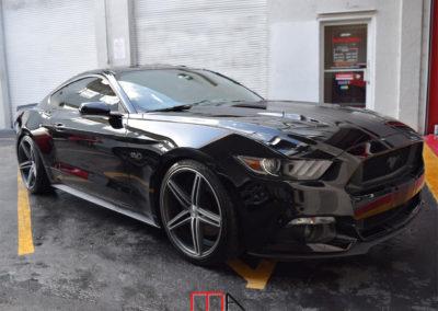 Mustang 5.0 Black