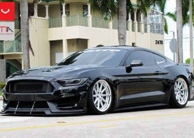 Mustang 5.0