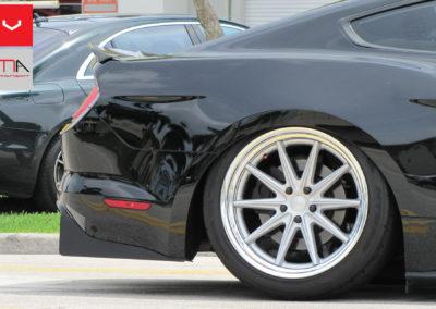 Rear Mustang